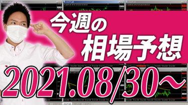 ドル円、ユーロ円、ユーロドルの相場予想【2021年8月30日~9月3日】