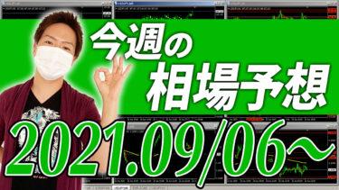 ドル円、ユーロ円、ユーロドルの相場予想【2021年9月6日~9月10日】